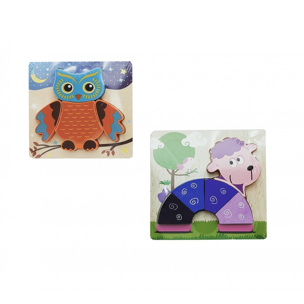 Set of 2 Unique Wooden 3D Puzzle Learning Toy with Different